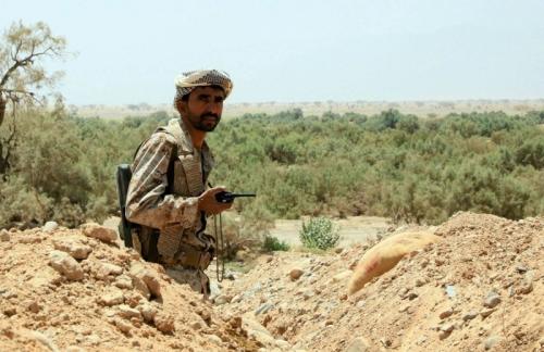 """كان رد القوات الحكومية """"لا تحتاج إسنادًا""""..  العميد طارق صالح:عرضنا تحريك بعض قواتنا لكن الحكومة رفضت"""